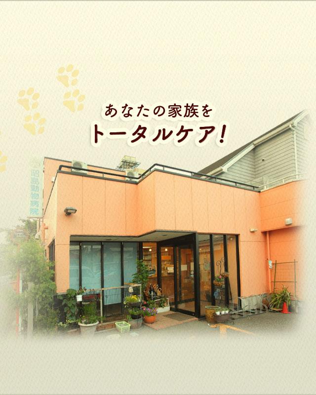 昭島 動物病院