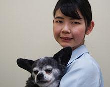 動物病院 看護師 野手